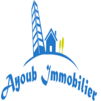 ayoub immobilier