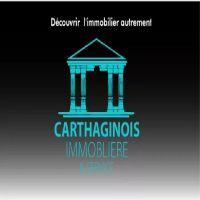 Carthaginois