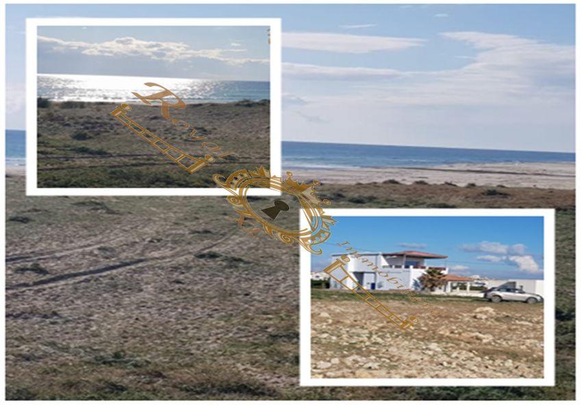 terrain constructible à la plage de  menzel horr