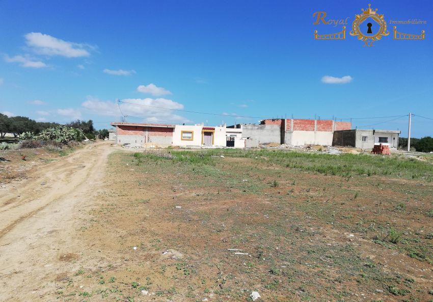 des lots terrains ;; kélibia