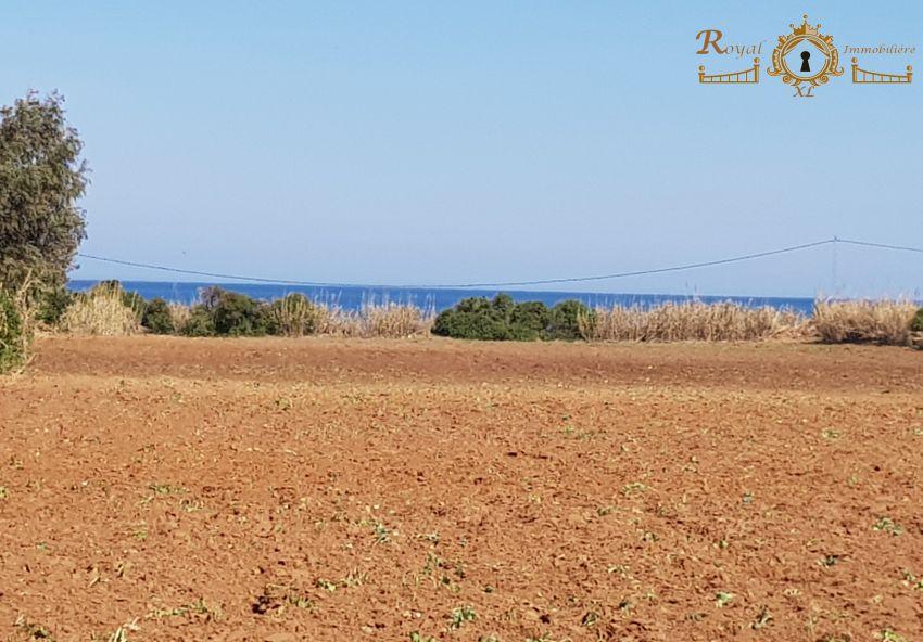 أراضي  على البحر في دار علوش