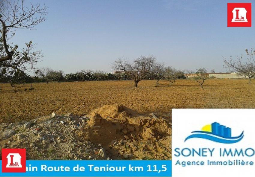 TERRAIN ROUTE DE TENIOUR KM 11,5
