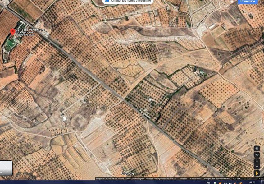 Terrain 5000M² à Sidi Bouali Prés Dar Zitouna