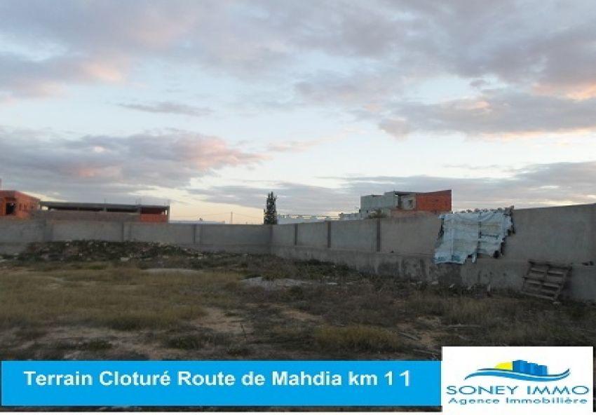 Terrain cloturé à laroute de mahdia km 11