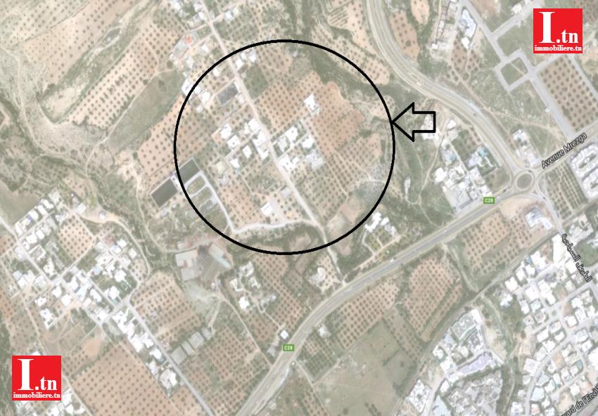 Terrain  Mrezga Hammamet Nord