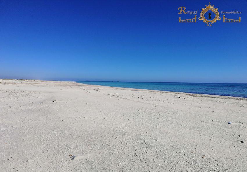 أرض على الشاطئ للبيع